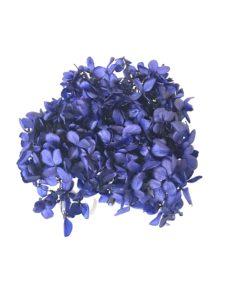 必ず知っておきたい!ハーバリウムに使用する花材の種類