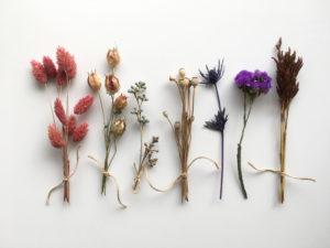 【プロが教える】ハーバリウム花材の購入方法と注意点