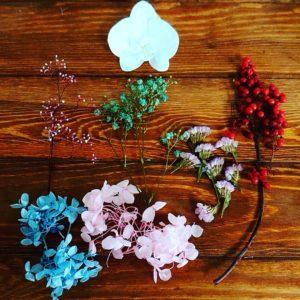 胡蝶蘭花材