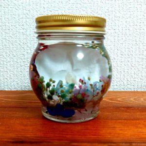 胡蝶蘭ハーバリウム